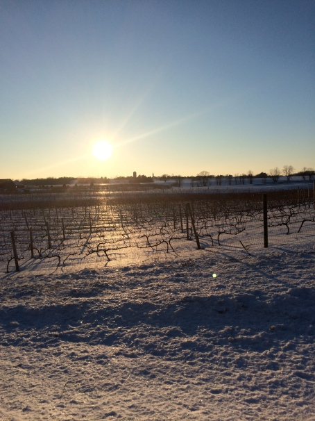 Winter Wine Festival | Not Your Average Dairy Queen