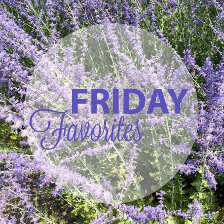Friday Favorites | Beauty and Blooms