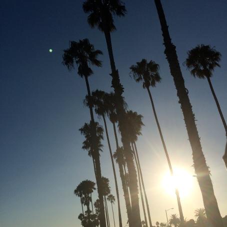 Honeymoon: LA | Beauty and Blooms