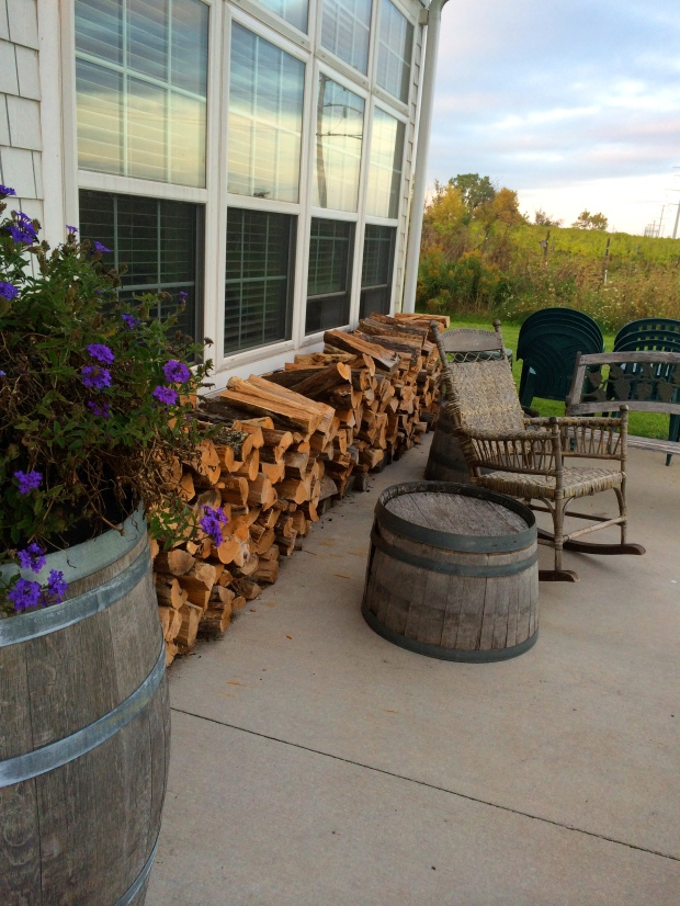 Night at the Vineyard | Beauty and Blooms