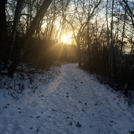 Winter Hike | Beauty and Blooms