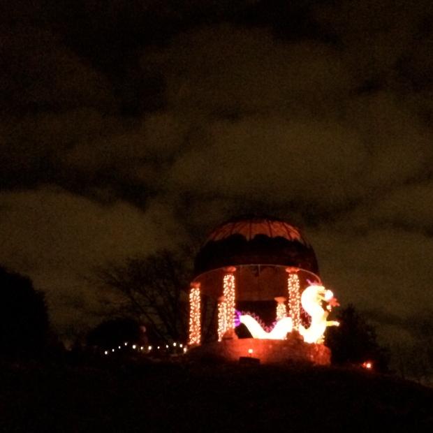 Botanical Garden Festival of Lights | Beauty & Blooms