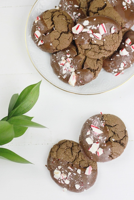 Chocolate Candy Cane Cookies. Perfect for the holidays!