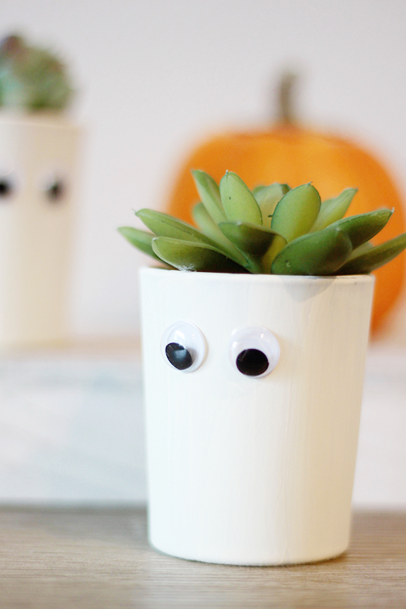 Halloween Succulent Planters